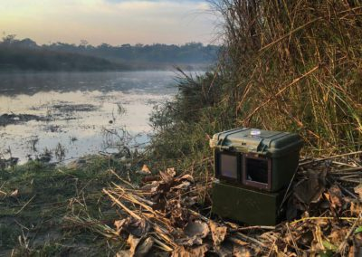 ON LOCATION - TIGER CAMERA TRAP, NEPAL